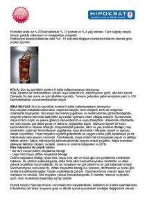 testraporu1-02